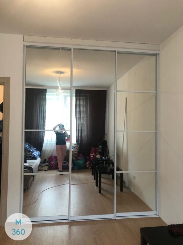 Зеркальная дверь купе Магдебург Арт 002742392