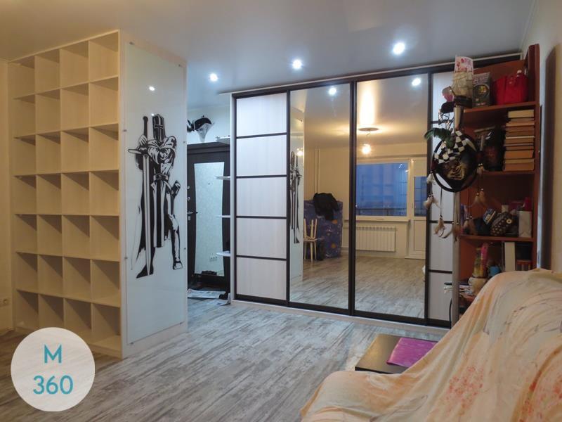 Шкаф в коридор Демьянка Арт 007560647